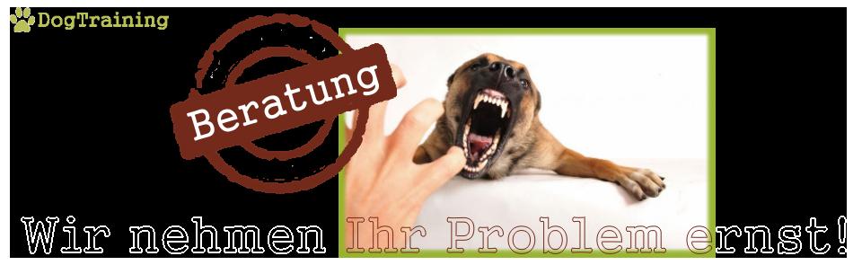 Problemhundeberatung
