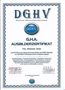 zertifikat_dghv (Klein)
